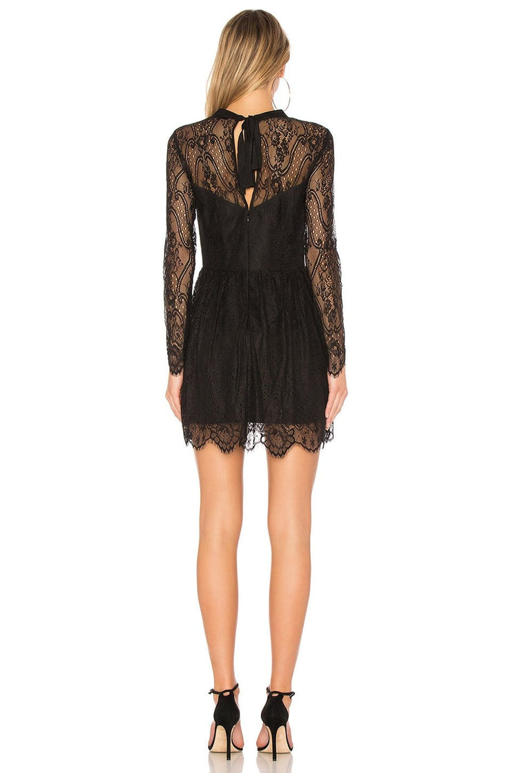 Paradise Lace Fit and Flare Dress, Dresses, paulina_b,- REHEART Canadian Online Wardrobe-Sharing Platform