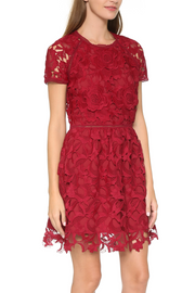Valencia Rose Lace Dress