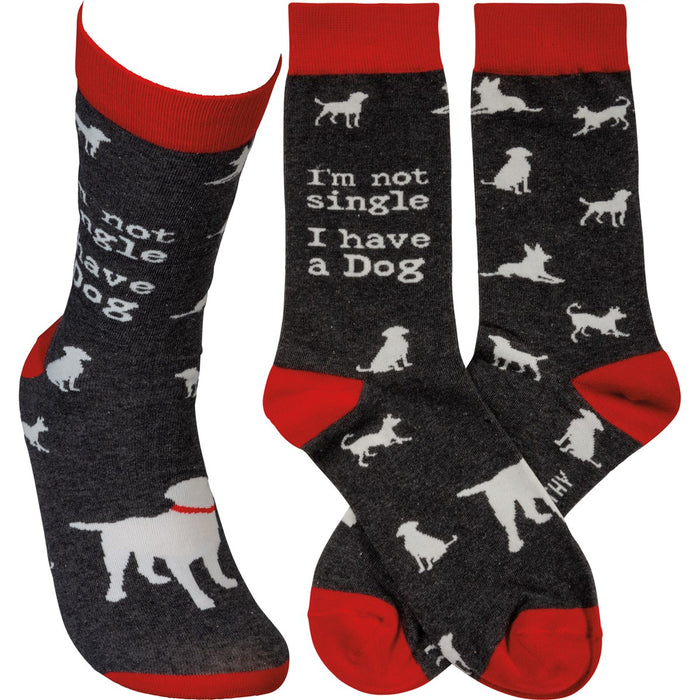 SOCKS- NOT SINGLE I HAVE A DOG