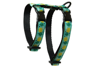 RC Pattern Kitty Harness