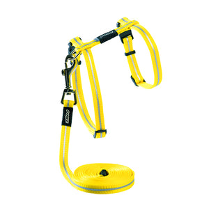 ROGZ ALLEY CAT HARNESS & LEAD 9-16""
