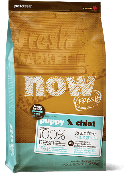 Now Fresh Grain Free Large Breed Puppy 25lbs