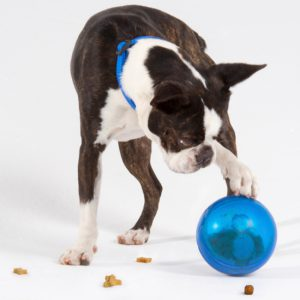 Rogz Tumbler Treat Ball