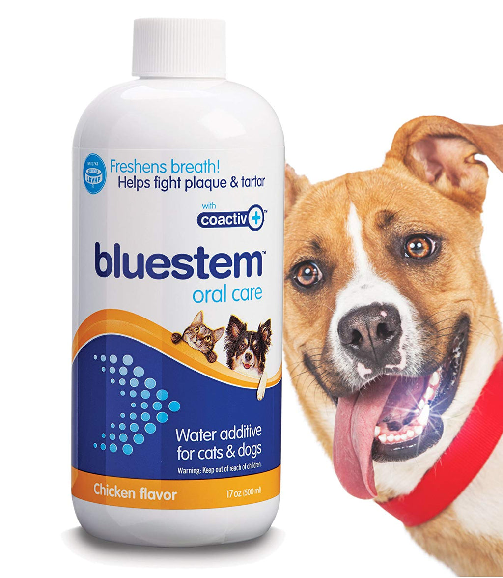 Bluestem Oral Care 500ml
