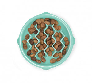 Slo-Feeder Dish Tiny - Mint 3/4 Cup