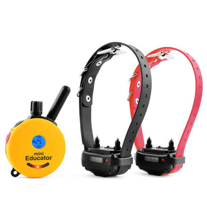 Mini Educator ET-302 2 Dog Remote Trainer