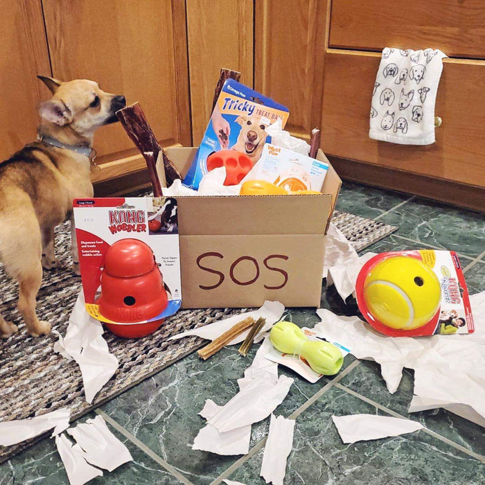 SAVE OUR SANITY DOG CARE PACKAGE- BIG DOG