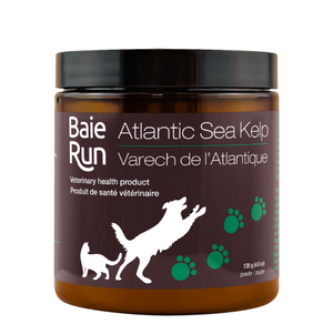 Baie Run  Atlantic Sea Kelp 250g