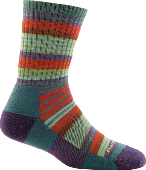 Darn Tough Sierra Stripe Jr. Micro Crew Light Cushion Sock