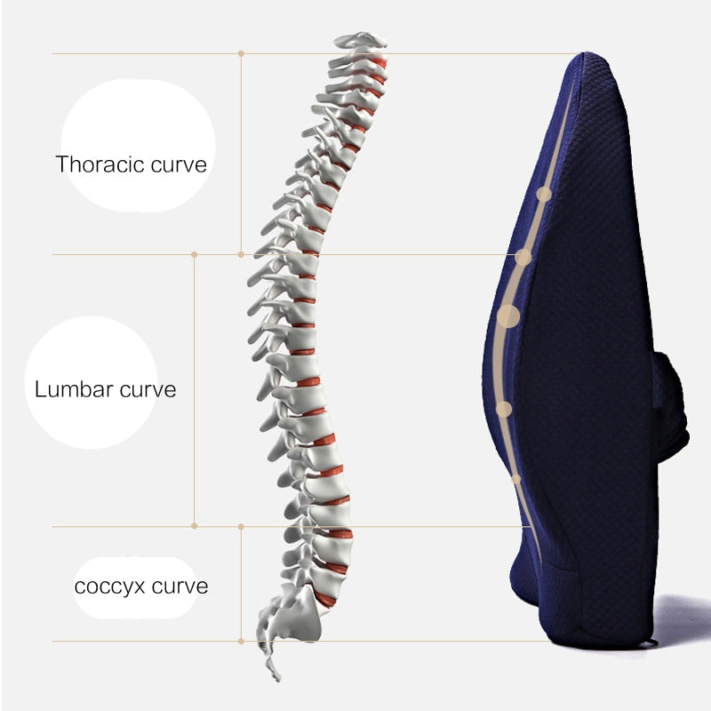 Deluxe Orthopedic Lumbar Support For Home & Office | Best Lumbar Support