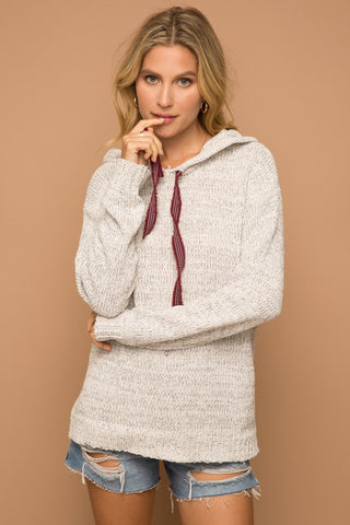 The Gwen Chenille Hoodie Pullover
