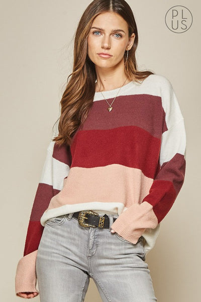 The Haven Color Block Sweater Curvy