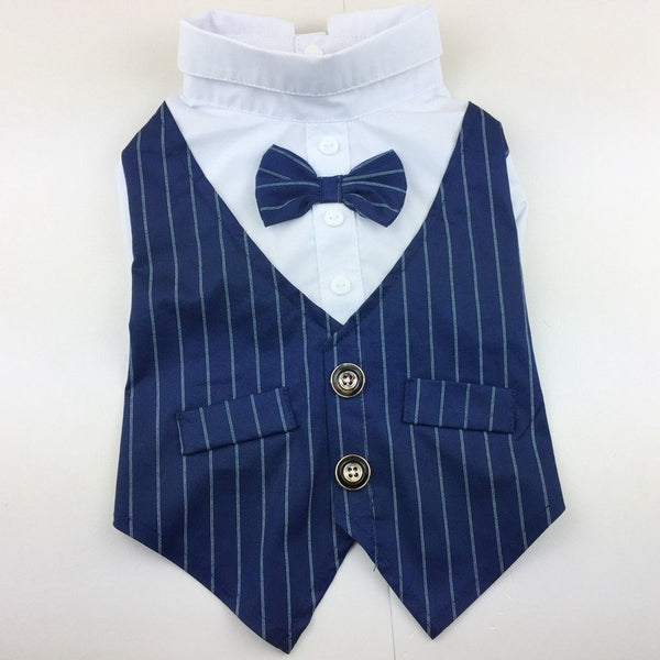 Stripe Stylish Suit Bow Tie Formal Wear -  200005133 - ShaadiMagic