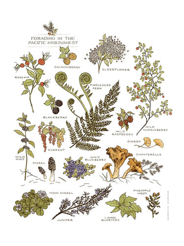Northwest Foraging Screen Print