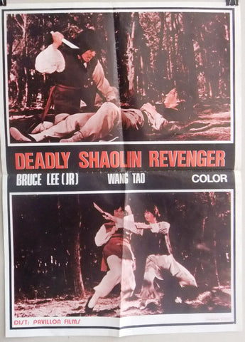 Deadly Shaolin Revenger Bruce Lee Jr Wang Tao Kung Fu Lebanese Movie Poster 70s