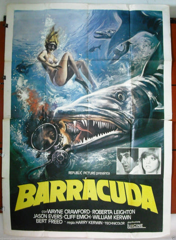Barracuda 4F Poster