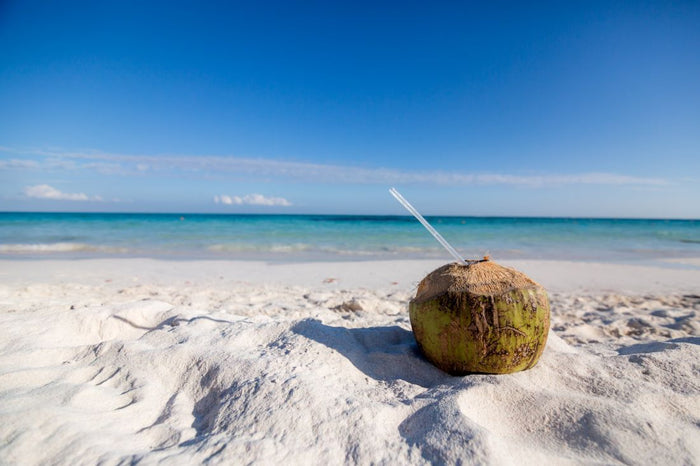 Everything You Need To Know About Coconut Water And Why We Love It