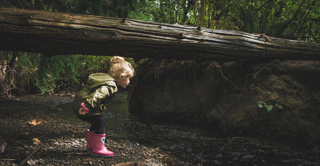 a child walking in the woods