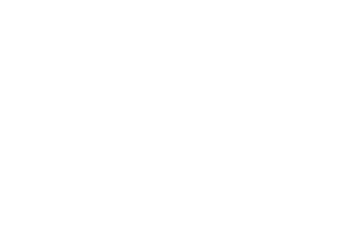 Florida Homestead Check Logo Monochrome