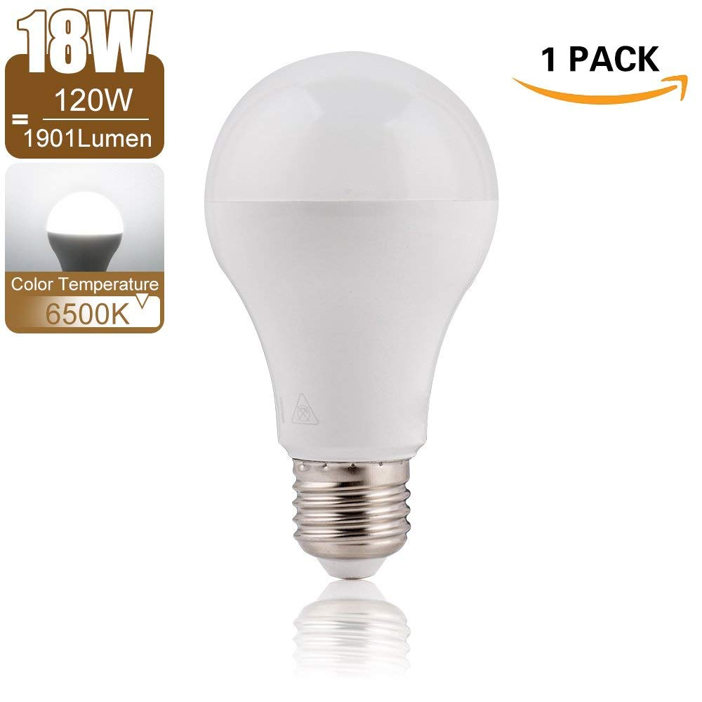 6500K Cool White LED Light Bulb