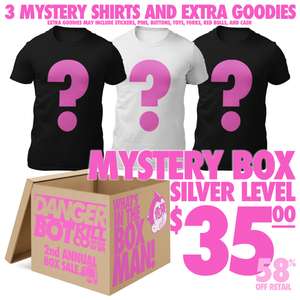 Silver Level Mystery Box