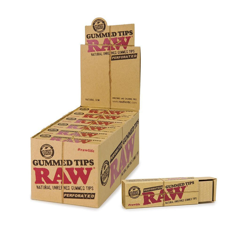Raw Perforated Gummed Tips (Box of 24 Packs) - The Dab Shack