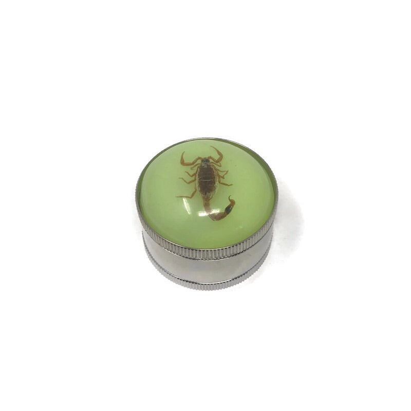 Grinder 3-Part Triangle Teeth 3D Insect (Box of 12) - The Dab Shack
