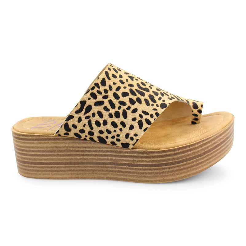 Blowfish Laslett Tan Leopard