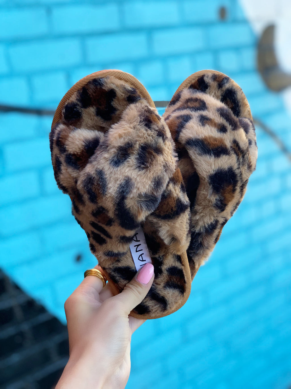 Dearly Slipper Leopard