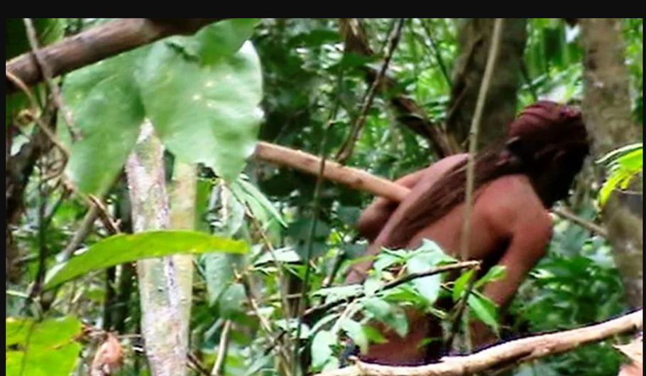 Watch rare video of uncontacted Amazonian, alone in forest for 22 years since rest of tribe was murdered