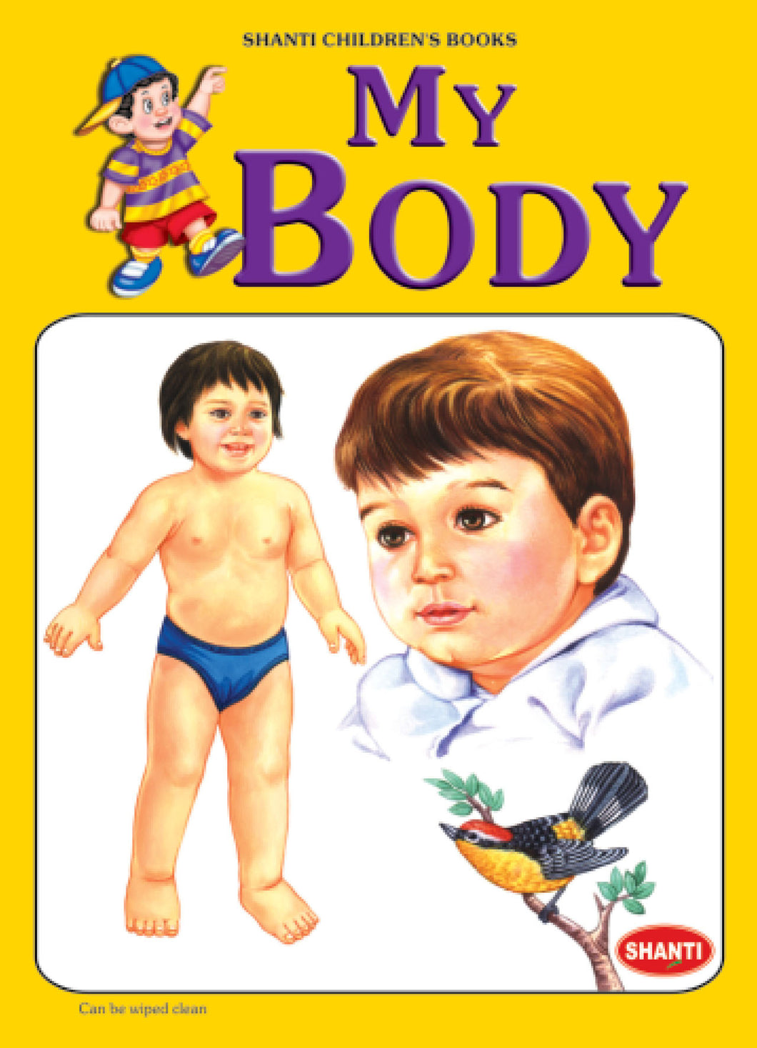 Picture Books for Kids 2 years-Plastic Series - My Body