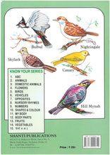 Picture Books for Kids 2 years-Plastic Series -  Know Your Birds