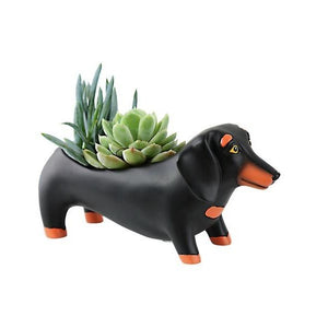 Michelle Allen: Planter Baby Otis Black Dog