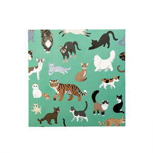 Greeting Card: Clowder of Cats
