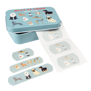 Rex London: Plasters in a Tin 30pk Best in Show