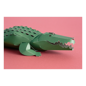 Top to Tail: Crocodile Paper Model Kit