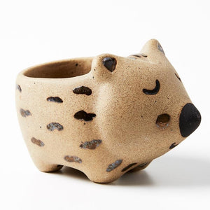 Jones & Co: Mini Wombat Planter