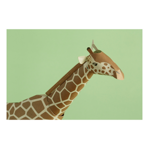 Top to Tail: Giraffe Paper Model Kit