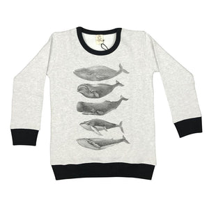 Whales Grey Marle Kids Jumper