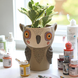 Hootie Owl Pot Planter