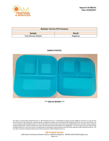 testing and services report with teal  plates