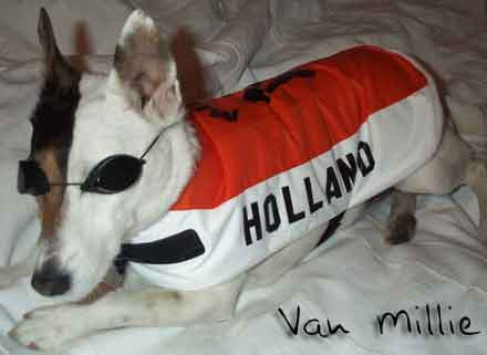 Holland FC dog shirt