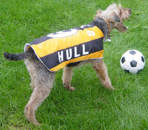 Hull City dog coat
