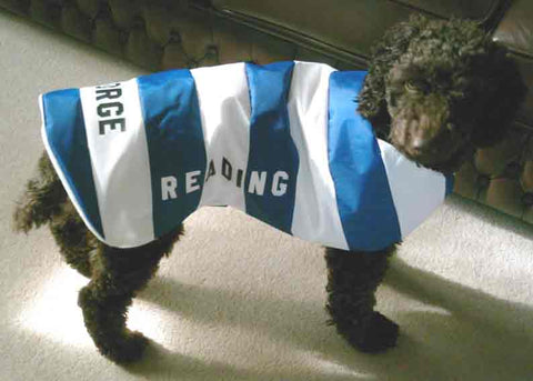 Reading FC dog coat
