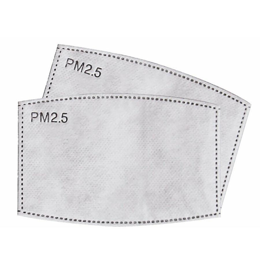 Replaceable PM 2.5 Filters