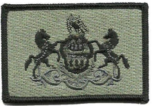 BuckUp Tactical Morale Patch Hook Pennsylvania Harrisburg State Patches 3x2""