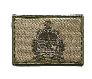 BuckUp Tactical Morale Patch Hook Vermont Montpielier State Patches 3x2""