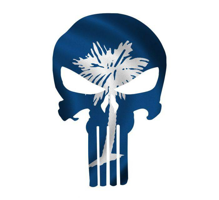 Punisher Skull South Carolina Flag Window Decal Sticker Graphic - Multiple Sizes
