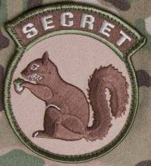 BuckUp Tactical Morale Patch Hook Secret Squirrel Multitan Patches 3""
