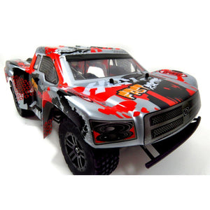 RC Pathfinder Remote Control Racing Truck (Silver)